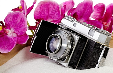 Old film camera with orchids