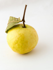 Yellow guava with leaf