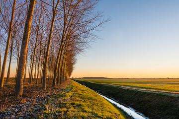 Countryside at sunrise