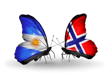 Two butterflies with flags Argentina and Norway