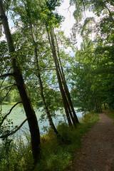 Am Ellerthäuser See, Landkreis Schweinfurt, Unterfranken, Deuts