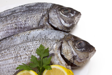 bream with lemon isolated