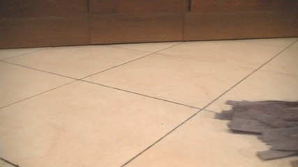 Using mop to clean a tile floor