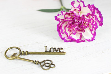 Valentines day key to love and pretty flower background
