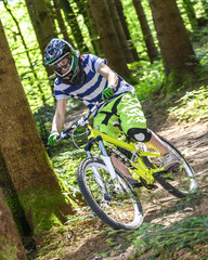 Bike-Trail im Wald