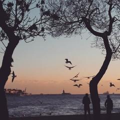 Seaside in Bosphorus