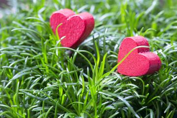 Herzen im Grünen Photo © Herby Meseritsch