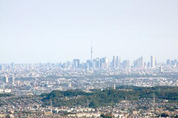 高尾山からの眺望