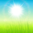 Sunny green natural background