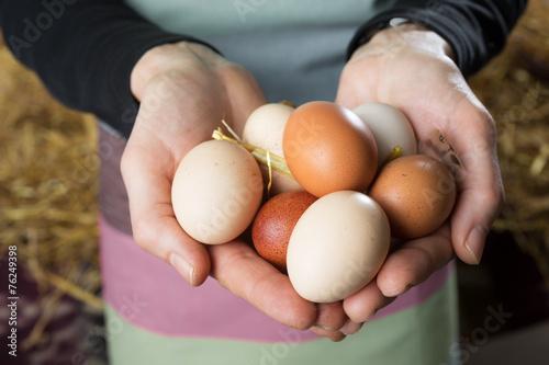 Leinwanddruck Bild White and  brown eggs