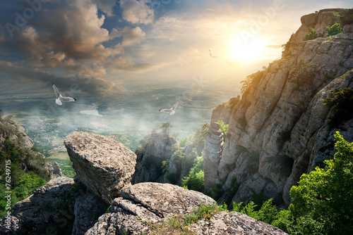Birds and rocks © Givaga