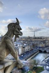 Gargoyle looking at Paris.