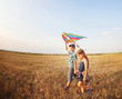 Happy boy and little girl with bright kite on a meadow