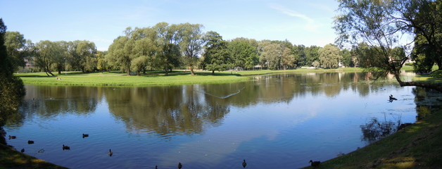 Panoramic landscape with pond