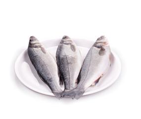 fresh seabass fish