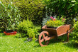 Wheelbarrow decoration in the garden