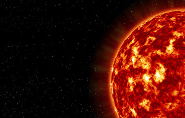 The closeup of Sun star