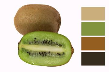 kiwi fruit isolate color Swatch vitamins eco bio