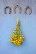 antique horseshoe and bunch st. Johns wort flowers on wall