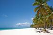 canvas print picture - Spiaggia Craraibica