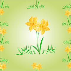 Daffodil Easter flower seamless texture vector