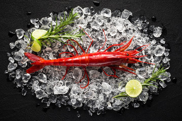 Fresh big red shrimp on ice on a black stone table top view