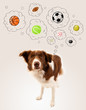 Cute dog with balls in thought bubbles
