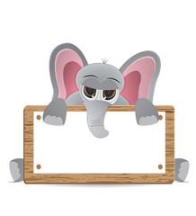 elephant peek behind text board