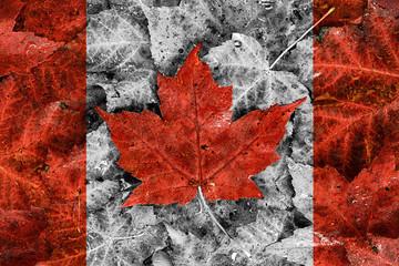 Real Leaf Canada Flag - Selective Colour