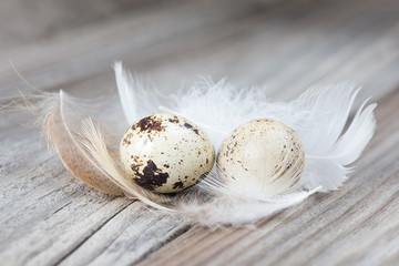 A couple of quail eggs