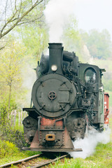 narrow gauge railway, Banovici, Bosnia and Hercegovina