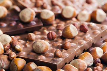chocolate bars with hazelnuts