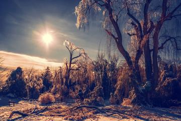 Solar Winter Ice Storm