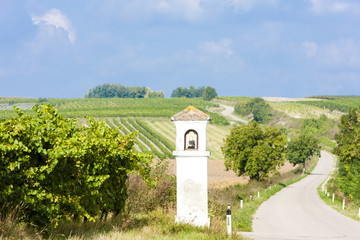 God's torture with vineyard, Southern Moravia, Czech Republic