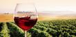 Leinwandbild Motiv Bicchiere di Vino rosso in Vigneto