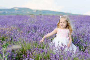 girl in lavender field