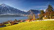 Sunshine near Thun lake in Switzerland Alps in winter