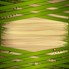 Wood background with green strips