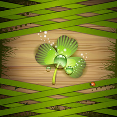 Wood background with clover and strips