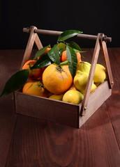 BOX WITH FRUIT OF SEASON