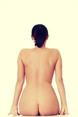 Beautiful naked woman sitting, rear view.