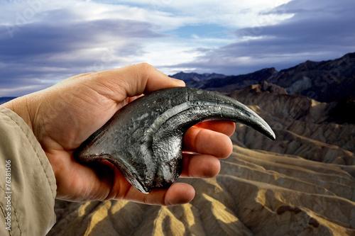 Velociraptor Claw. Poster