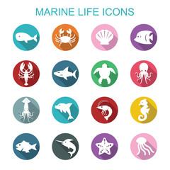 marine life long shadow icons