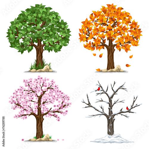 Four seasons - 76289788