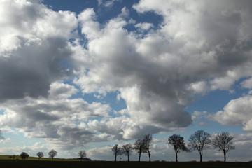 Rural landscape near Moritzburg, Saxony, Germany.