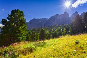 Sunny summer morning in Italy Alps