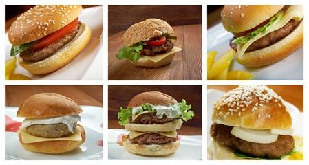 set of different american  hamburger