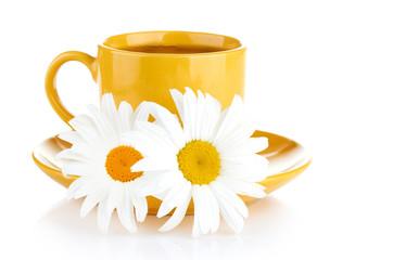 fresh tea camomile flowers