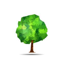 polygonal tree