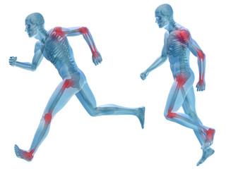 3D human man pain anatomy isolated
